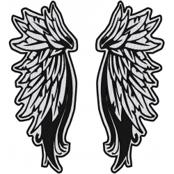 REFLECTIVE ANGEL WINGS